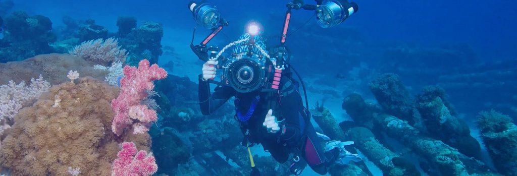 Aquarium Istanbul Photo Shooting